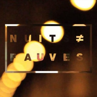 Nuits Fauves