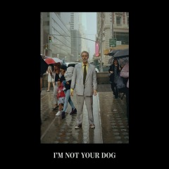 I'm Not Your Dog