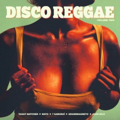 Do the Disco Skanking (Taggy Matcher Mix)
